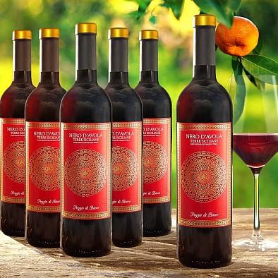 Offerta promozionale 6 bottiglie Nero dAvola