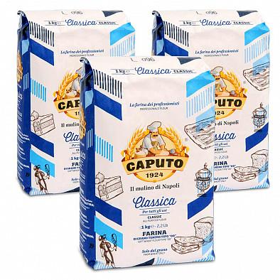 3 x Caputo Classica Blu