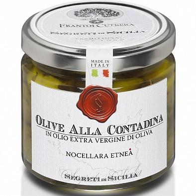 Olive Nocellara dell'Etna