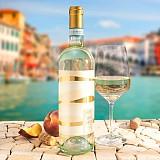 Pinot Grigio DOC - Vin blanc