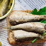 Sardine all'olio di oliva