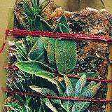 Pancetta Steccata agli Aromi